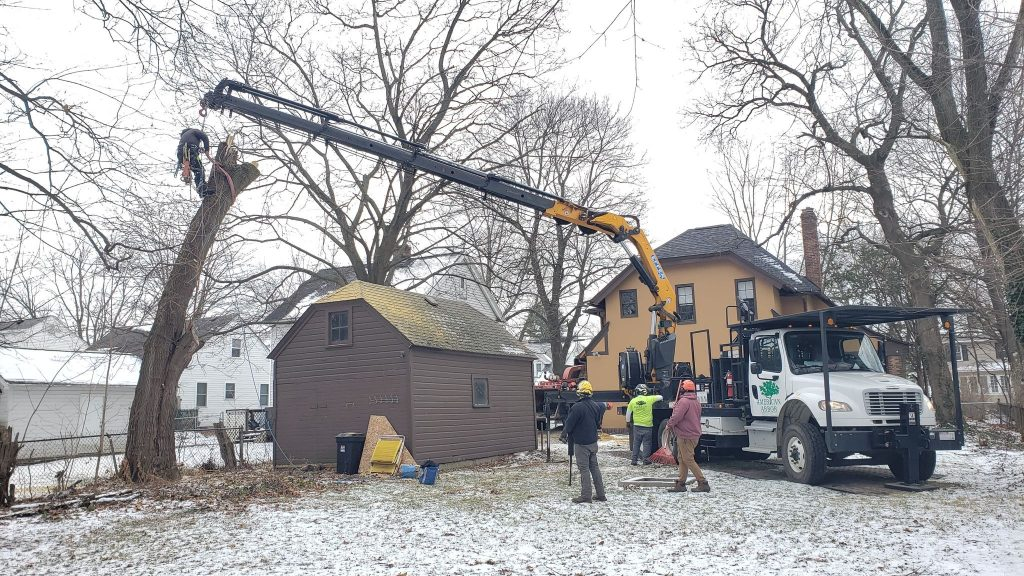 Tree Removal with Crane Winter